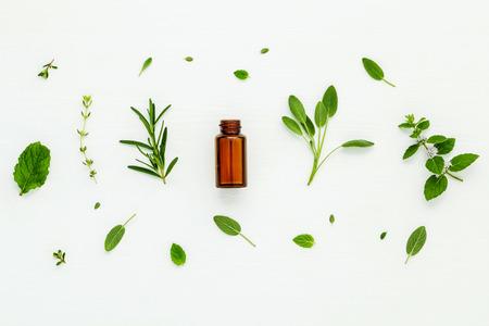 Flasche ätherisches Öl mit frischen Kräuter-Salbei, Rosmarin, Zitronenthymian, Thymian, grüne Minze und Pfefferminze Aufbau mit Flach lag auf weißen Holztisch.