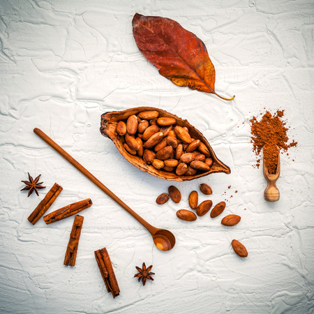 chocolate powder: Brown chocolate powder in spoon . Roasted cocoa beans in the dry cocoa pod , star anise and cinnamon sticks on shabby wooden background. Stock Photo