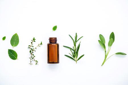 Flesje etherische olie met verse kruiden salie, rozemarijn, citroentijm, tijm, groene munt en pepermunt setup met plat lag op witte houten tafel. Stockfoto