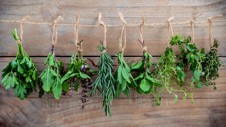 Assorted hanging herbs ,parsley ,oregano,mint,sage,rosemary,sweet basil,holy basil,  and thyme for seasoning concept on rustic old wooden background.