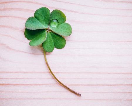 みすぼらしい木製の背景にクローバーの葉.四つ葉のクローバーの象徴最初のものは信仰のためであり、第二は希望のためであり、第三は愛のためで