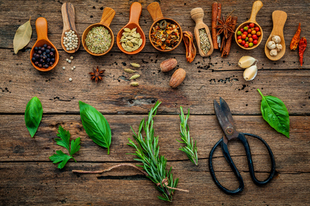 Various herbs and spices in wooden spoons on wooden background.