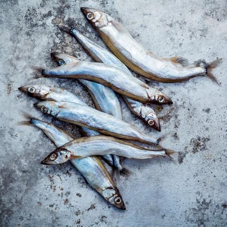 Fresh catch Shishamo fish fully eggs Standard-Bild - 113142228