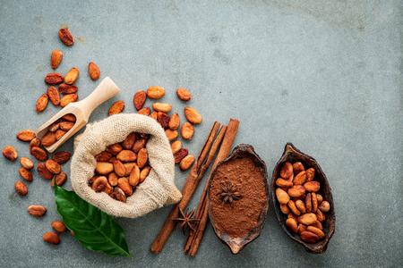 Cacaopoeder en cacaobonen op beton