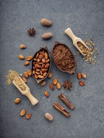 Cocoa powder and cacao beans on stone