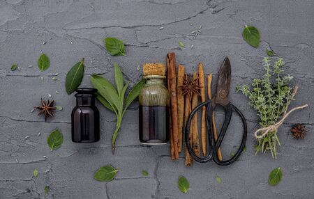 Bottle of essential oil with fresh herbals on dark concrete