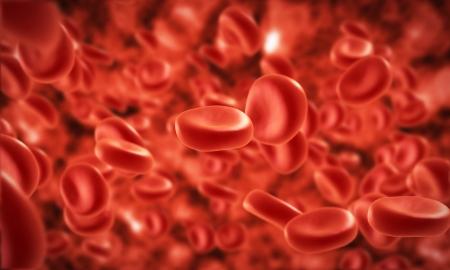 globulo rojo: transmisión de las células de la sangre en la vena Foto de archivo