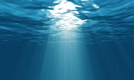 plancton: Iluminaci�n subacu�tica
