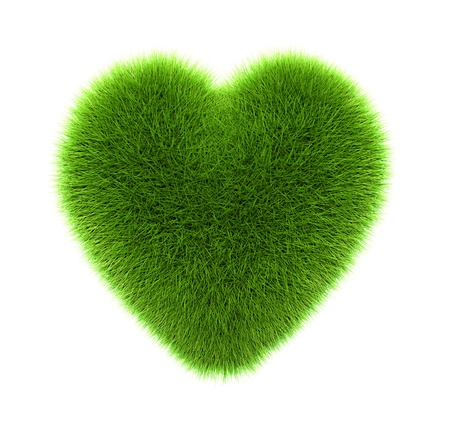green grass heart, isolated on white photo