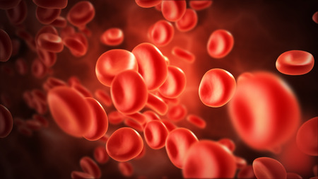 blood flow: streaming blood cells in vein with depth of field