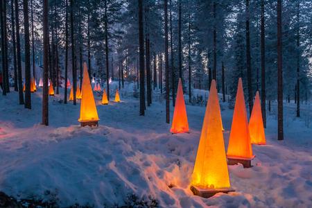 Bos in de buurt van Santa park: scène van de winter met zaklampen