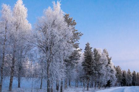 Beautiful vibrant scandinavian winter scene. Stock Photo
