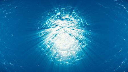 plancton: light underwater