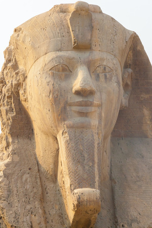 Statue of Ramesses II at the museum in Memphis - Egypt