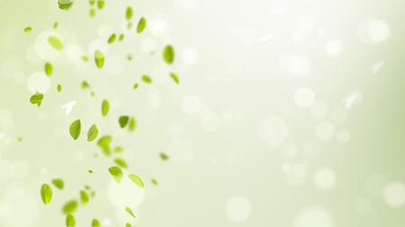 spring background, spring background illustration with green leaves, bokeh, petals and birds