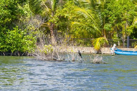 Koggala lake in Galle District, Southern Sri Lanka