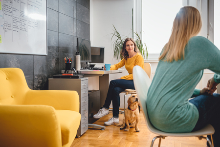 Two woman sitting at the desk and talking in the office and small yellow dog is siting on the floor