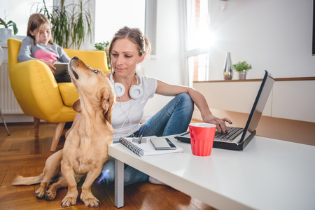 Woman sitting at the coffee table on the floor and Stroking dog at home while daughter sitting on the armchair and using tablet