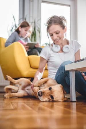 Woman sitting on the floor and Stroking dog at home while daughter sitting on the armchair and using tablet Stock Photo