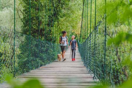 Mother and daughter walking over wooden suspension bridge with small yellow dog in the forest 免版税图像 - 85011286