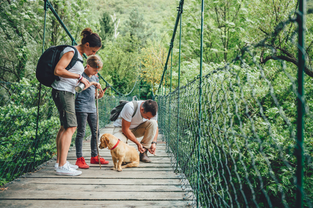 Family with dog standing on a wooden suspension bridge and using smart phone to navigate 免版税图像