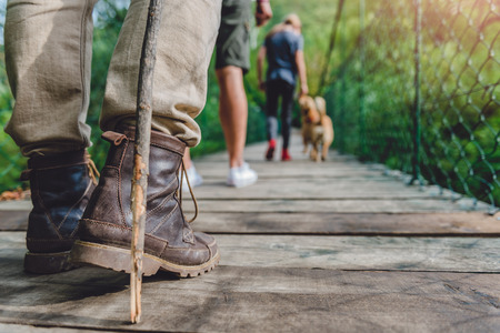Family with dog waking over wooden suspension bridge in the green forest 免版税图像
