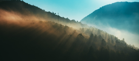 Mountains and morning fog over the forest