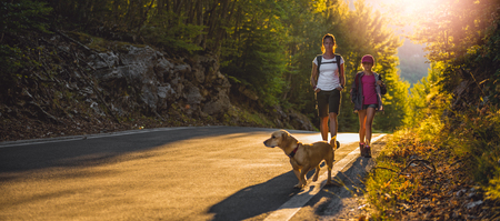 Mother and daughter hiking by the asphalt road in the forest with a small yellow dog