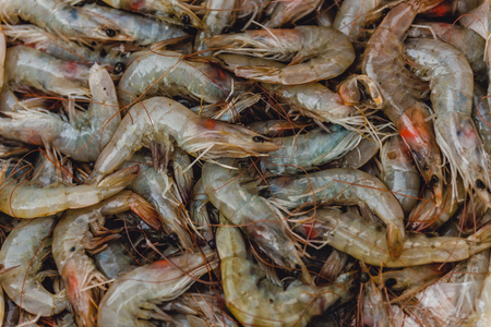 Fresh shrimp on basket