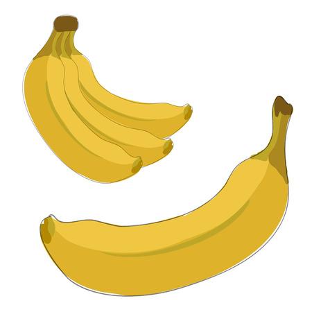 Gele bananen. Eén en thee in een bos.