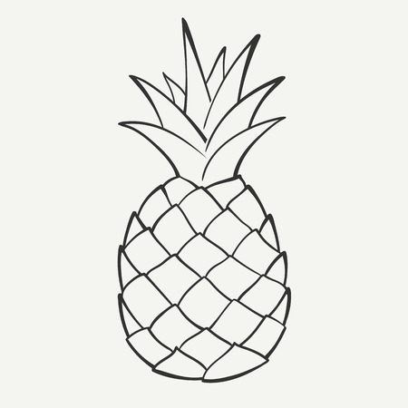 outlines: Outline black and white image of a pineapple