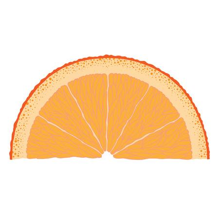 Met de hand getekende beeld van oranje slice. Stock Illustratie