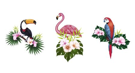 Hand-drawn illustration of a sitting on a branch rainbow toucan, parrot, flamingo, hibiscus, palm tree, rose and green leaves. Imagens