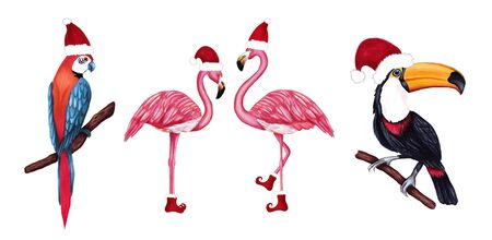 Set of winter tropical birds toucan, parrot and flamingo in Santa hat and shoes. Christmas design for cards, fabric, wrapping paper. Merry Christmas and Happy New Year vertical greeting card. Stockfoto