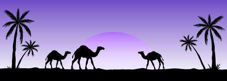 Silhouette of camel caravan going through the desert. Vector illustration for islamic background, poster, calendar, banners, postcards and etc. 向量圖像