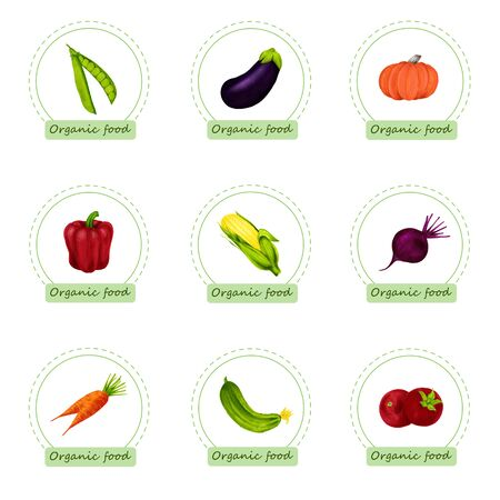 Set of organic food labels. Hand drawn bio vegetables. Design for menu, natural food stores, packaging and advertising. Poster with frame and borders decoration. Eco shop farm product. Healthy food.