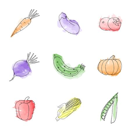 Set of watercolor illustration of juicy vegetables isolated on white background. Organic food icon. Healthy and vegetarian food.