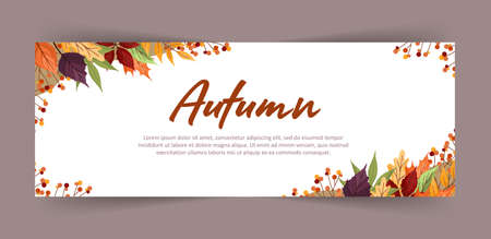 Banner with colorful autumn maple, rowan, alder and aspen leaves and branches. Web design. Vector illustration in flat style.