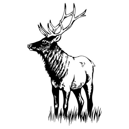 deer vector silhouette black  イラスト・ベクター素材
