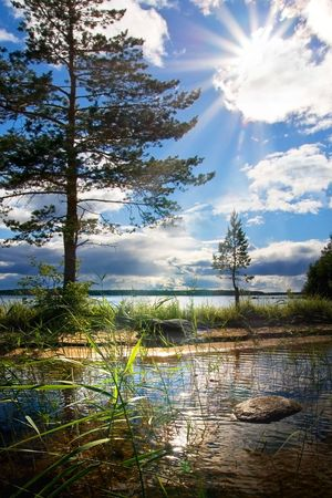 The blue sky. Cloudscape. Solar beams make the way through a cloud. A play of light in branches of pines, a cane, patches of light on water. Stock Photo