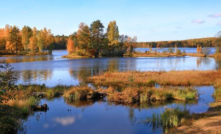Autumn landscape on the lake. A sunny day. The blue sky and elegant trees are reflected in a water mirror.