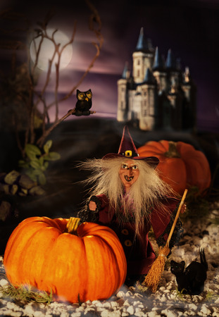 Witch doll for Halloween with her black cat. Handiwork. Stock Photo