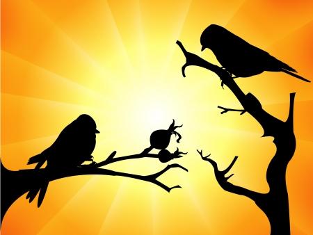 Birds silhouette Stock Vector - 18516493