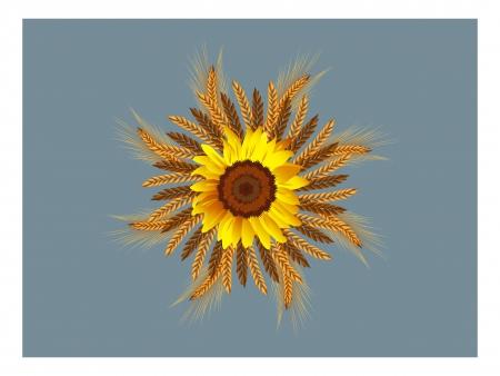 corn flower: Autumn decoration Illustration