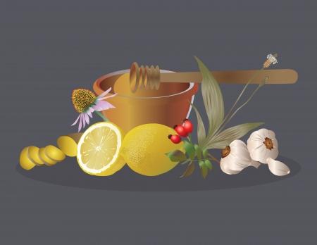 plantain: Way to nature