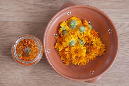 pot marigold: Pot maringold