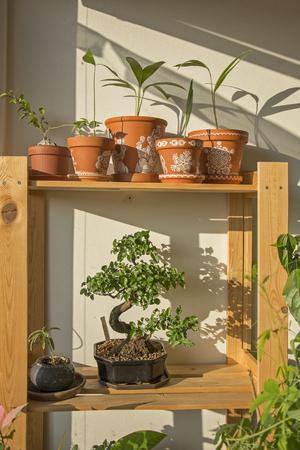 Decorative green corner