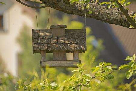 Birdhouse 写真素材