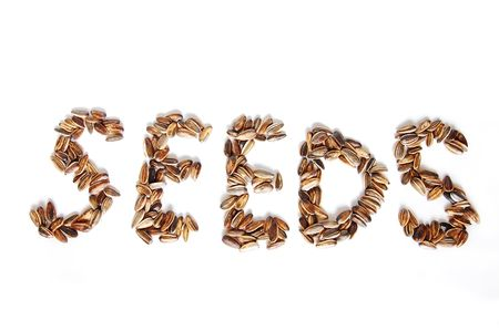 A word made of seeds photo