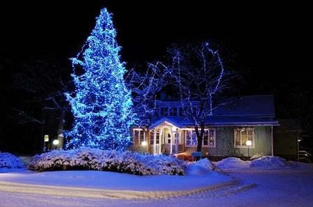 푸른 불빛에 투르 쿠, 핀란드 -2010 년 1 월 3 일 : 놀라운 크리스마스 트리 에디토리얼